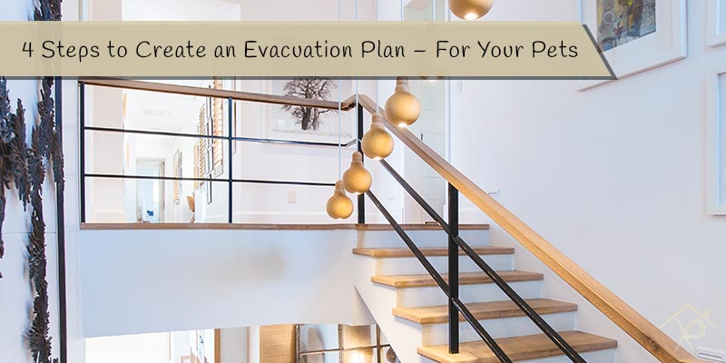4 Steps to Create an Evacuation Plan - For Your Pets - Yesurs Realty & Kris Pat